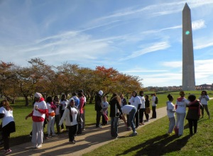 Washington DC FGM Walk - Nov 8 2014 - GWPF (c) mediageode 2014 with permision (87)