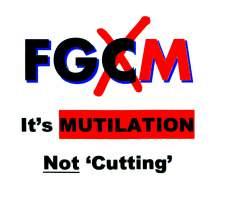 FGM not FGC-FC - image credit Hilary Burrage Blog